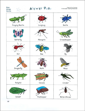 bug bingo and insect or not science activities printable bingo lesson plans and ideas. Black Bedroom Furniture Sets. Home Design Ideas