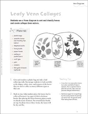 Leafy venn collages venn diagrams printable craftivities lesson leafy venn collages venn diagrams ccuart Image collections