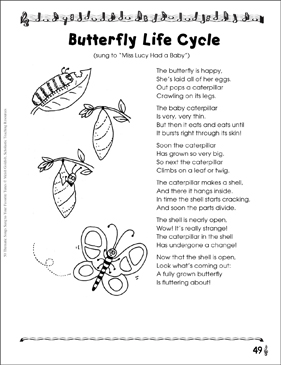 Butterfly life cycle thematic song printable texts and skills sheets butterfly life cycle thematic song ibookread Read Online