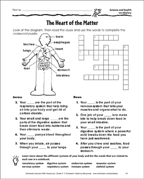 The Heart Of Matter Science And Health Vocabulary
