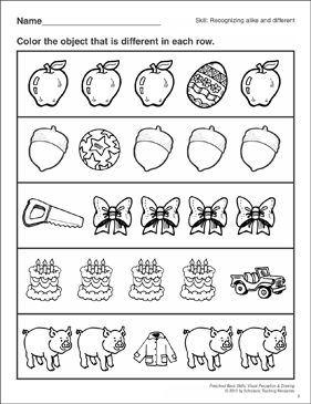 Recognizing Alike and Different: Preschool Basic Skills (Visual ...