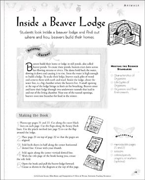 Inside A Beaver Lodge Science Manipulative Printable