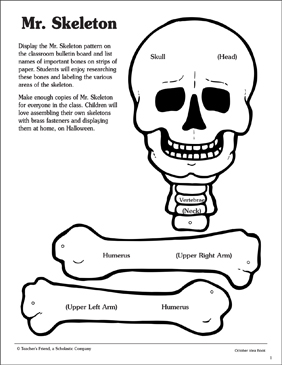 Mr. Skeleton Pattern and Activities | Printable Craftivities and ...